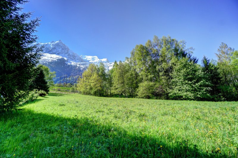 <p>Plot of land of 2750m2 located in a pretty, and undiscovered, part of Chamonix. Views of Mont Blanc. Building licence for
